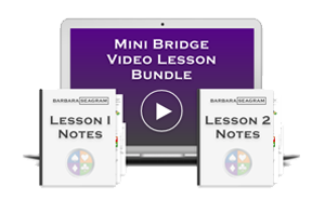 Mini Bridge Lessons